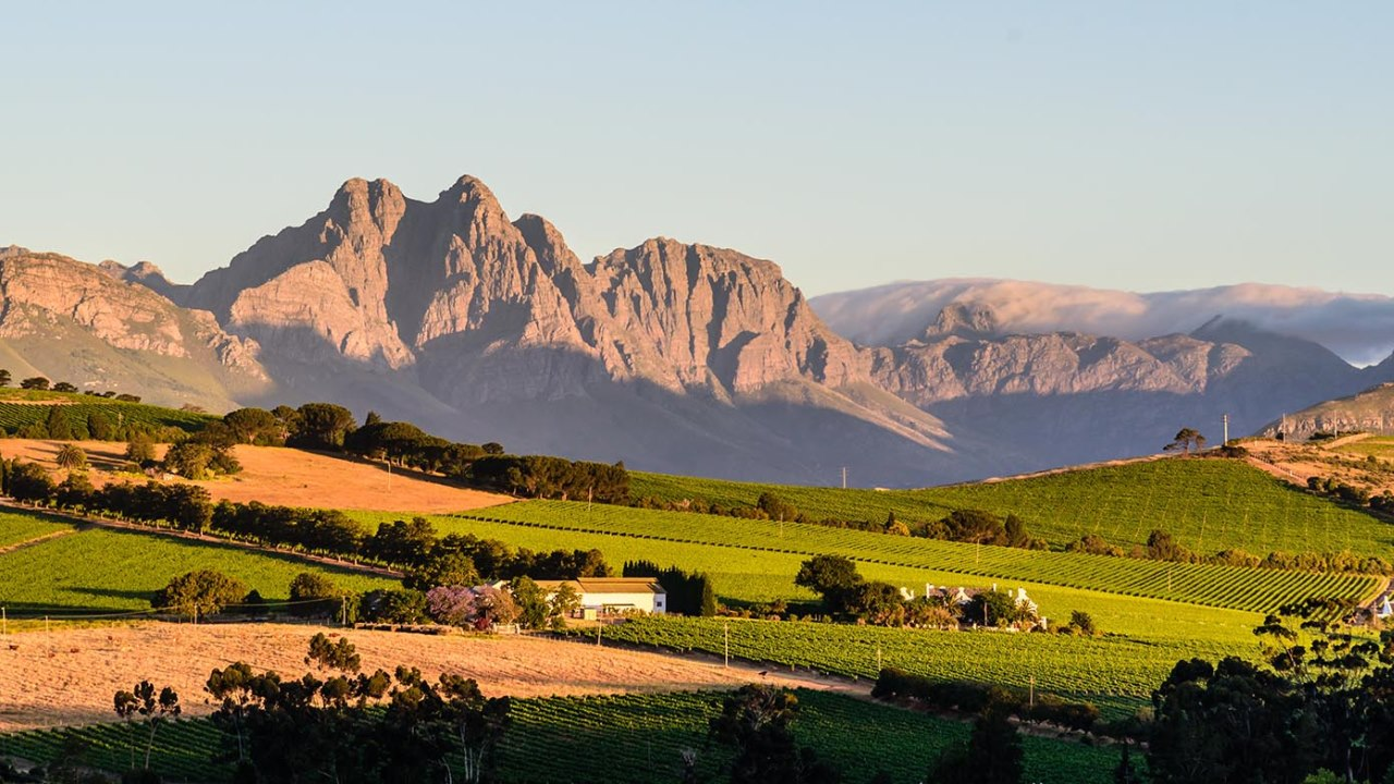 Winelands Beauty