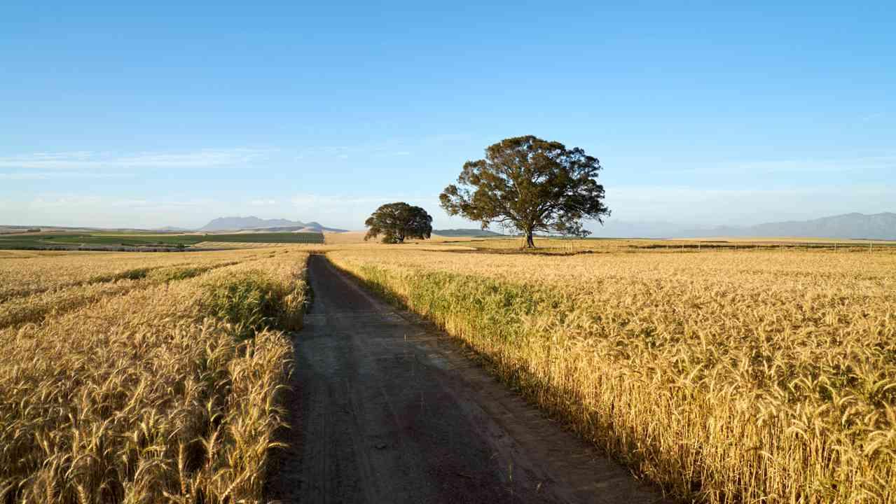 agriculture film