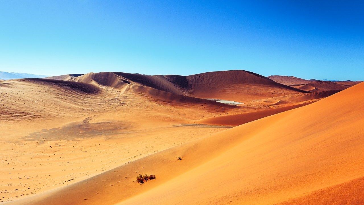 Africa & Desert
