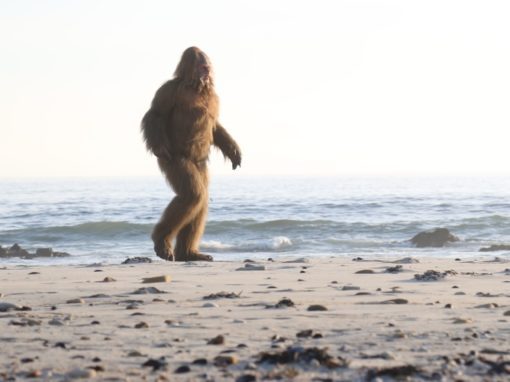 Jack Links – Messin With Sasquatch – BeachDave Laden/Hungy man