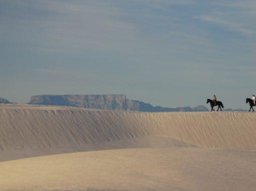 Desert & Africa